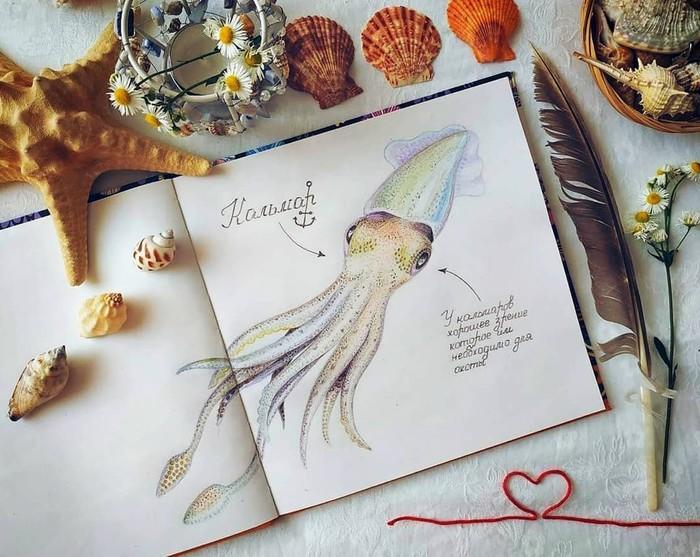Кусочек лета в холодный январь Лига художников, Скетч, Кальмар, Цветные карандаши, Рисунок