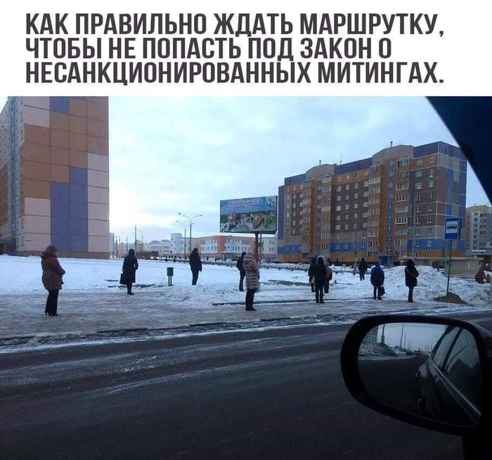 Законы в действии)