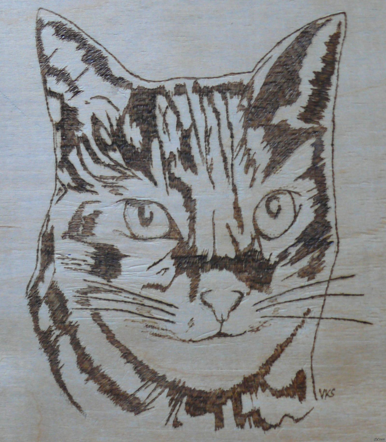 Коты картинки для выжигания по дереву