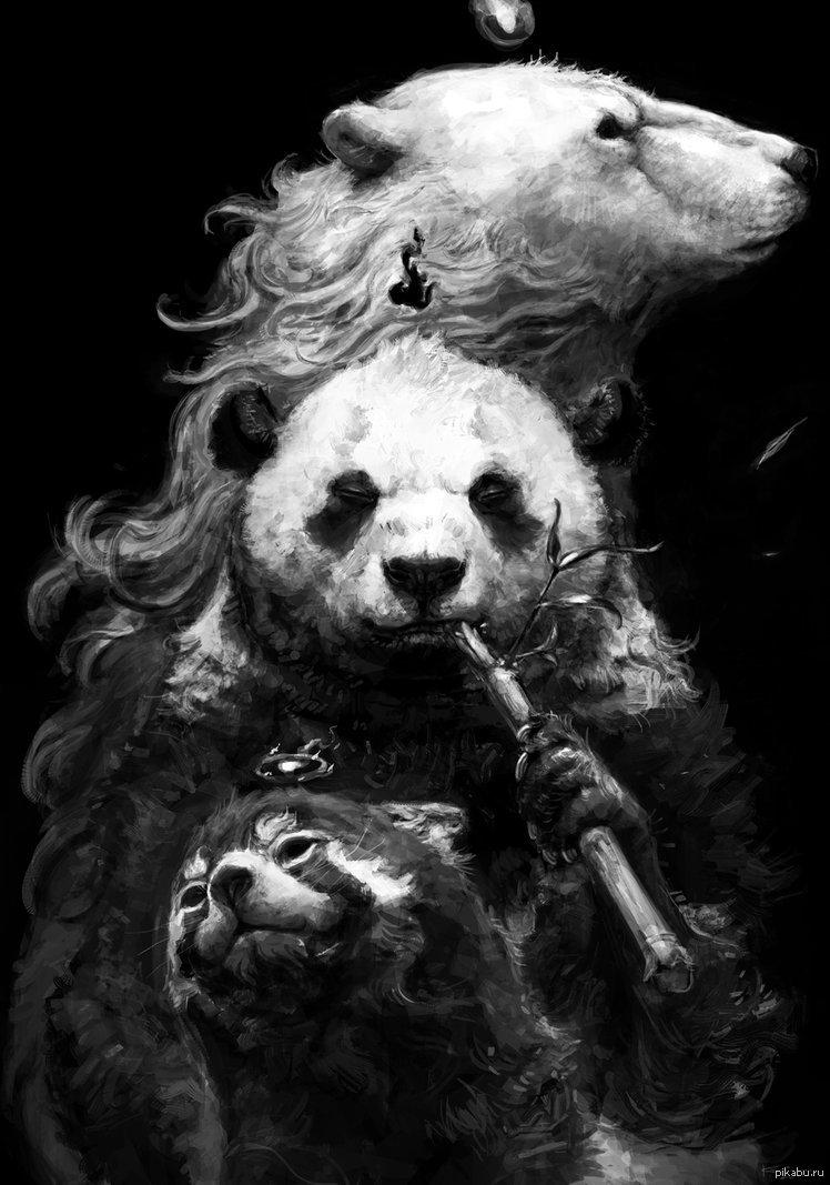 Крутые картинки медведя