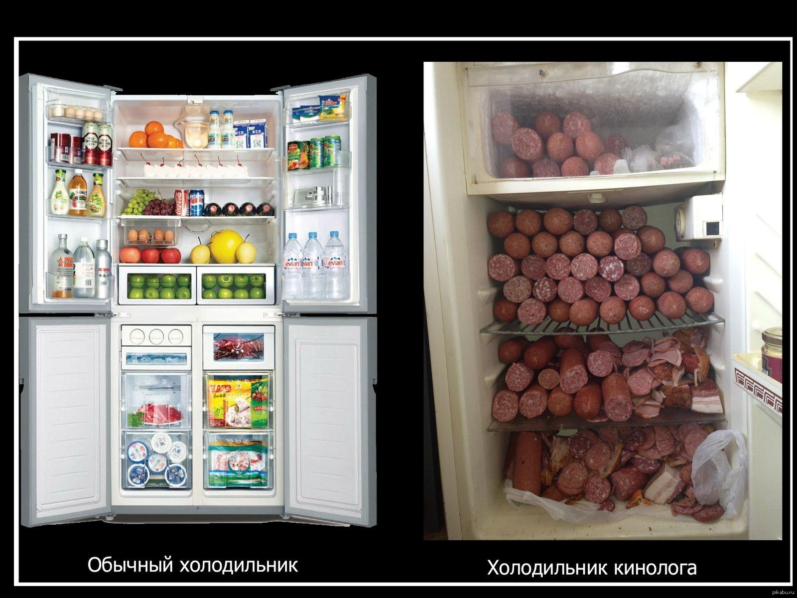 Летием внучке, холодильник приколы картинки