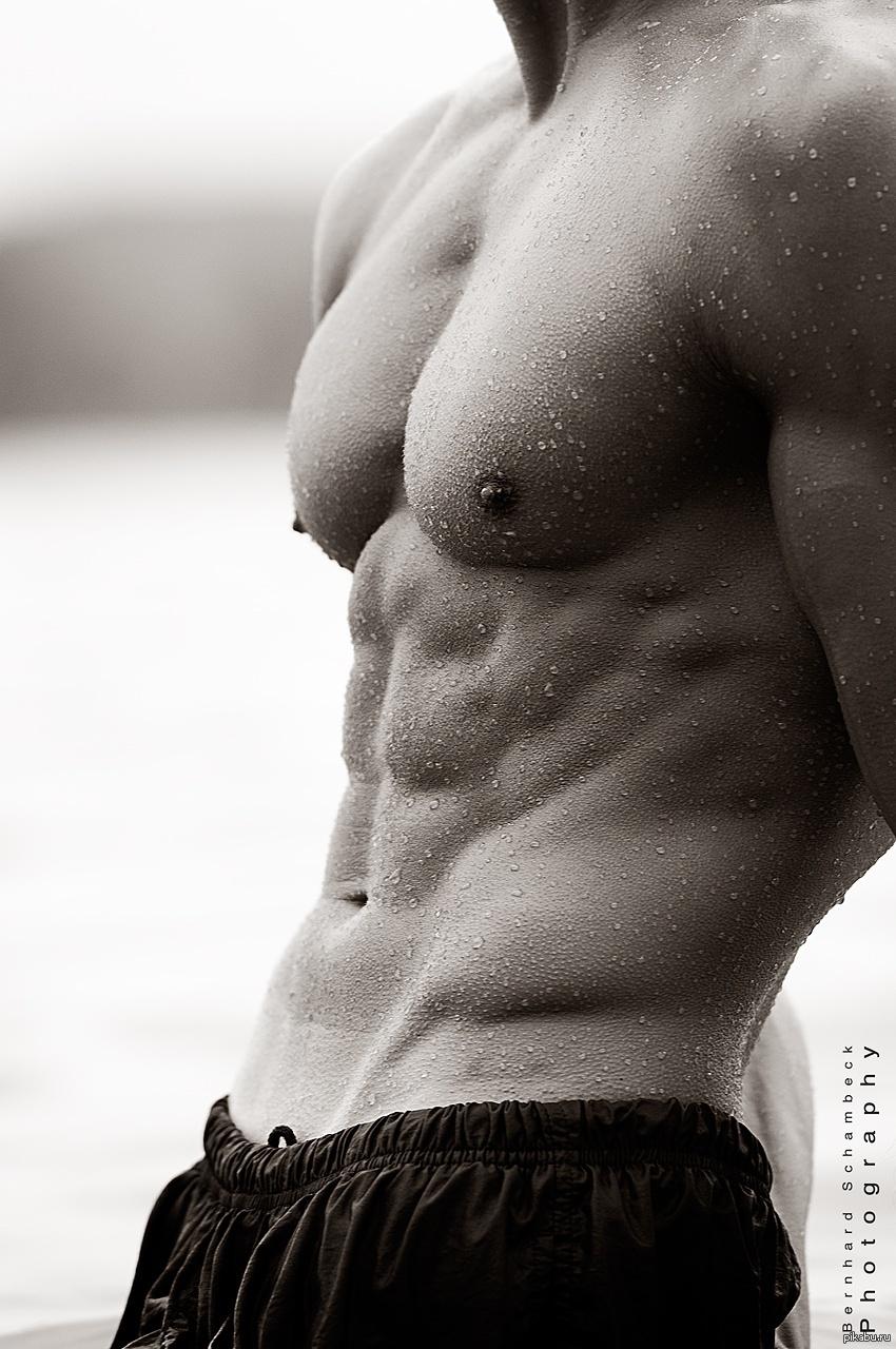 Тело сексуальное мужское