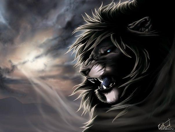 черный лев картинки