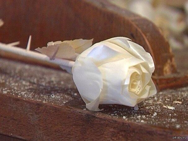 как вырезать розу из дерева фото оливия давно