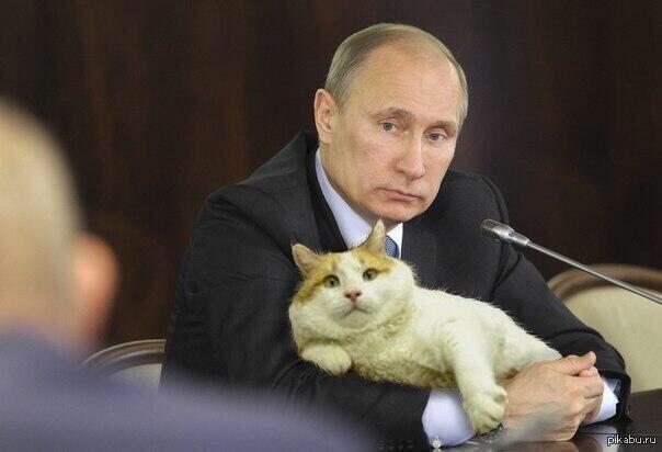 https://cs5.pikabu.ru/post_img/big/2015/07/08/7/1436356013_722215794.jpg