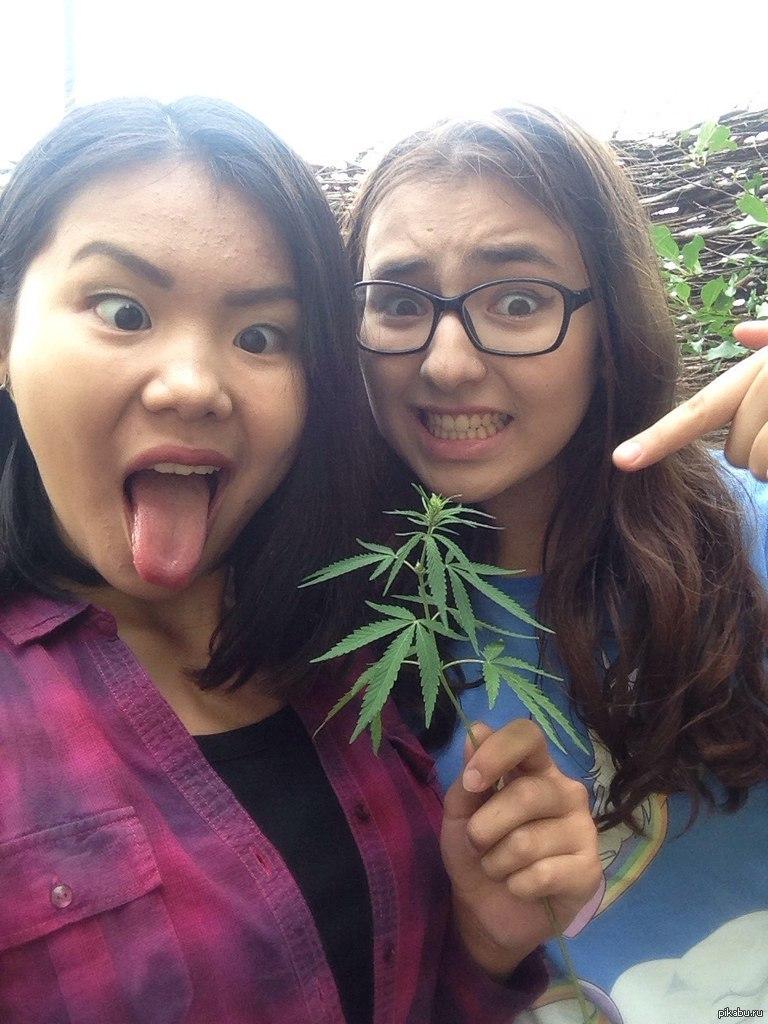 Марихуана которая растет во дворе как можна курить коноплю