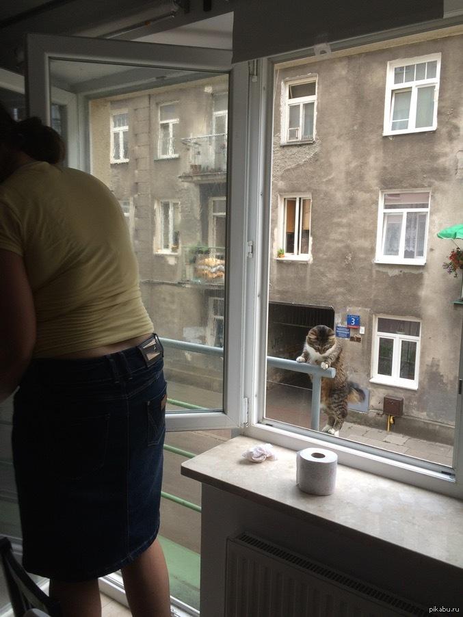 golaya-smotrim-v-okna