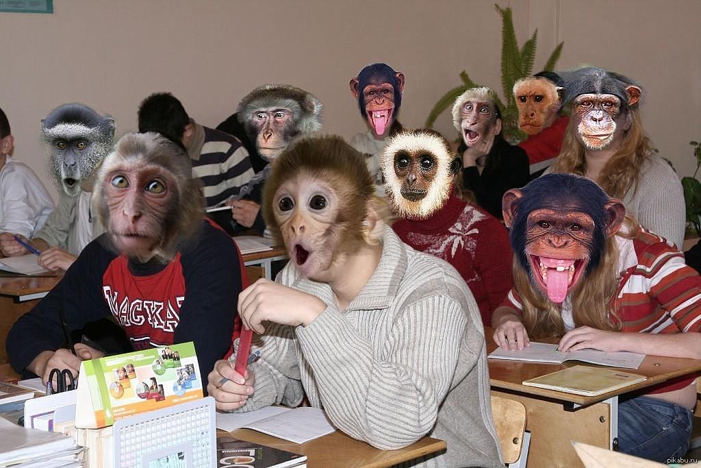 Смешные картинки для одноклассники