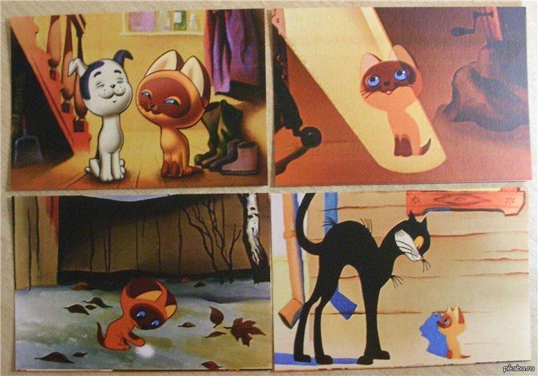 Картинки с мультфильма кот по имени гав