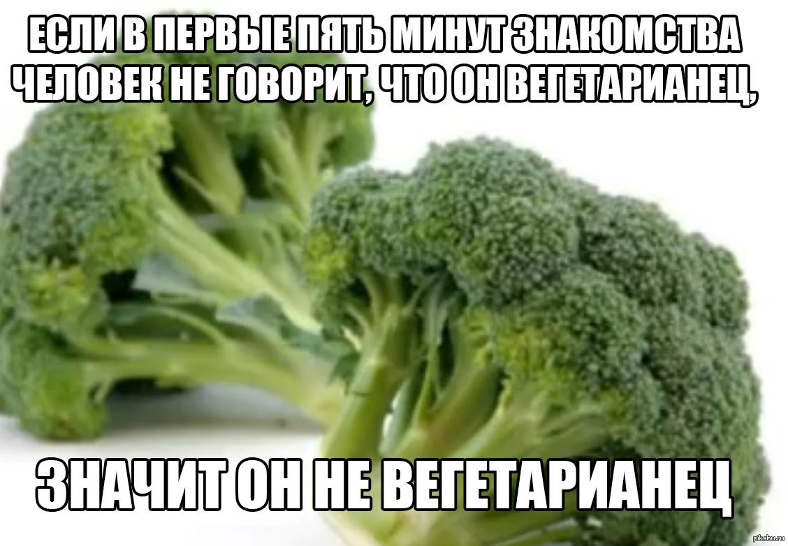 каждого демотиваторы вегетарианства для миддлтон