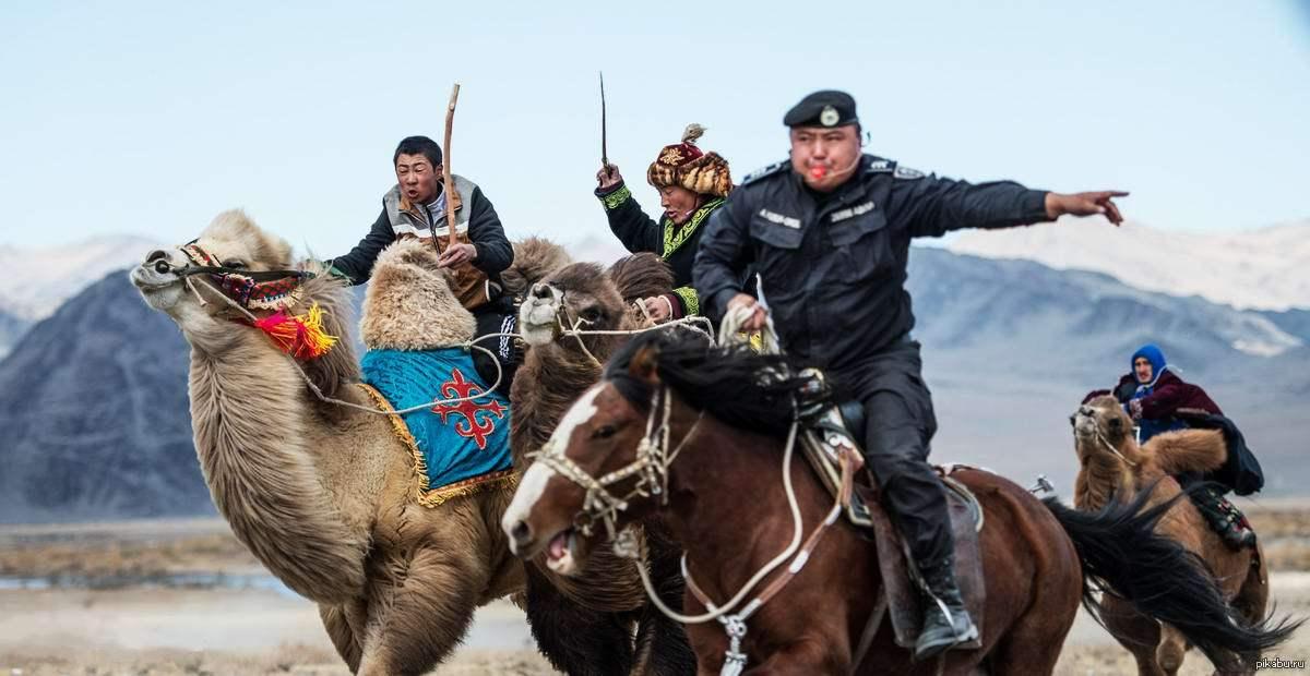 мешают прикольное фото монголов состоит
