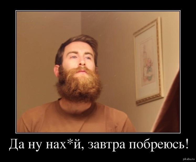 бородатые мужики демотиваторы смены