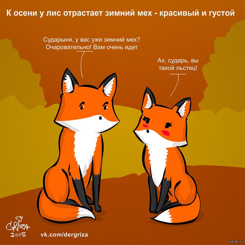 Открытки новому, картинки лисичка с надписями