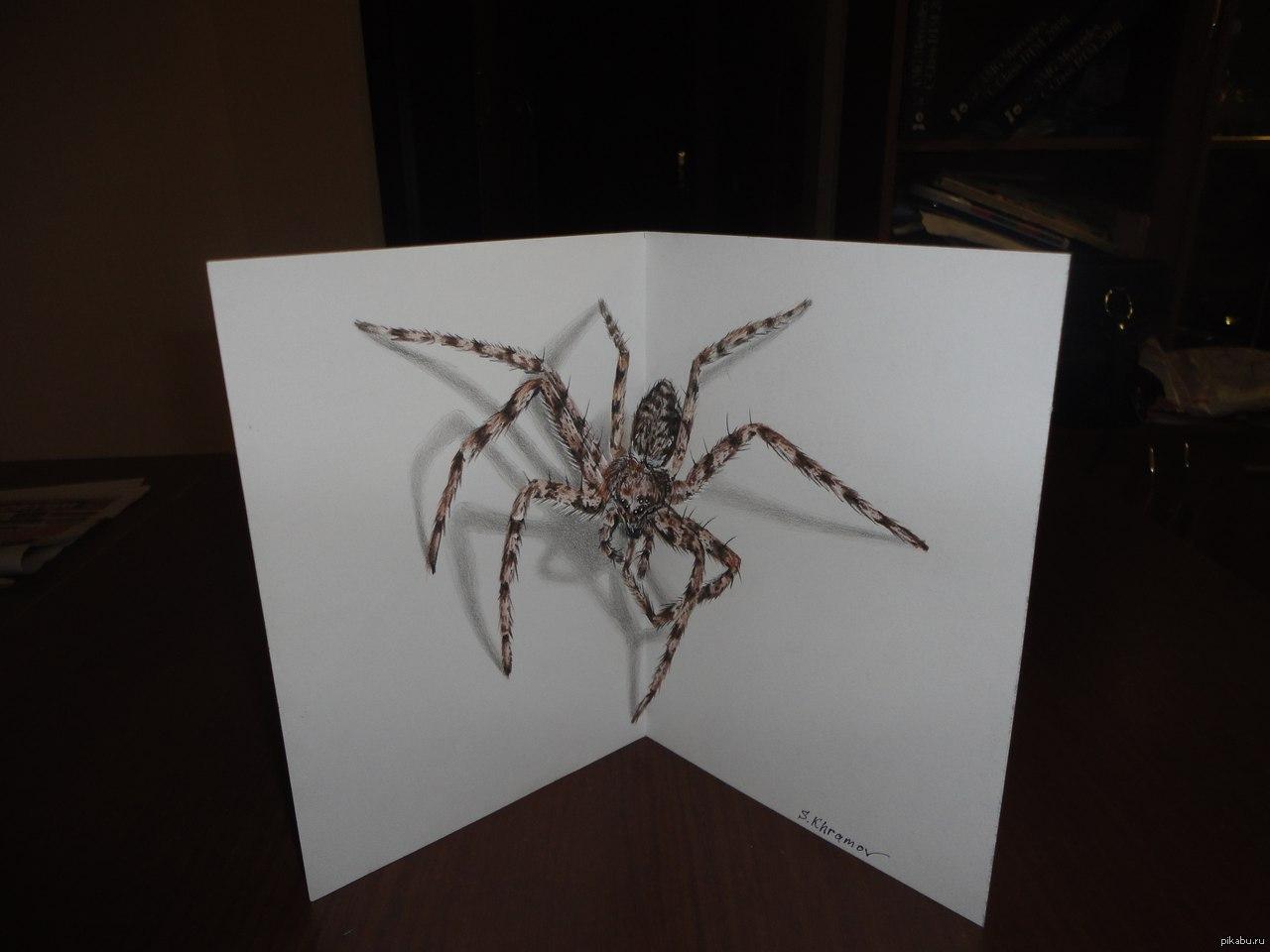 Открытки пауков, открытках