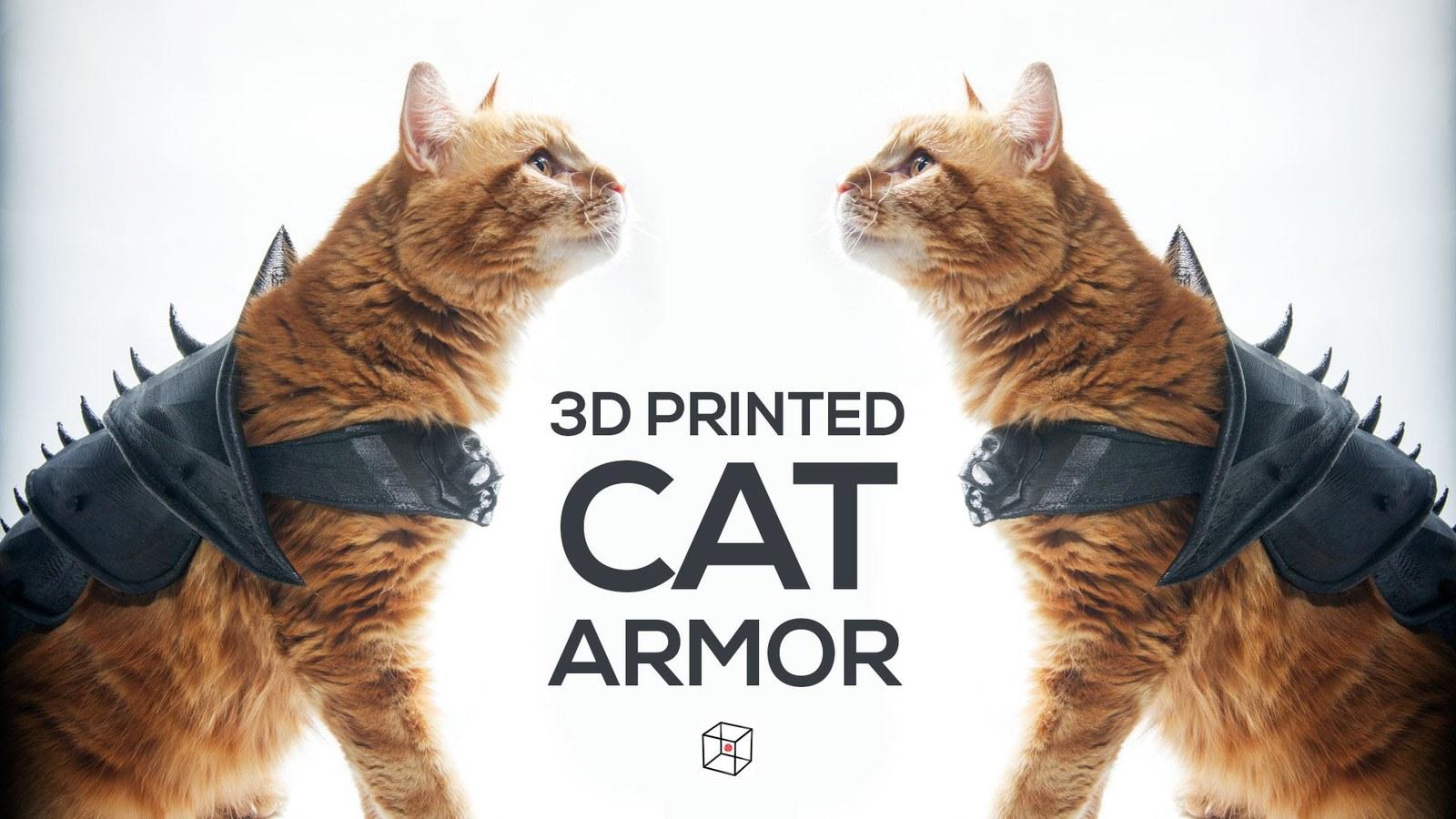 Принтер и кот видео